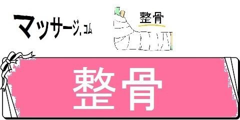 マッサージチェア価格ネット局・整骨(カテゴリ)画像